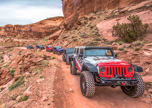 Jeeps on the trail