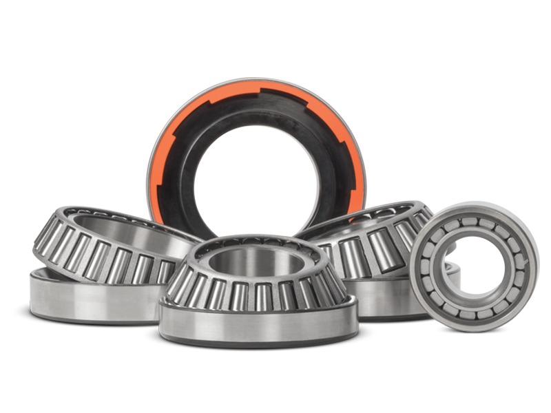 Spicer Select Differential Carrier Bearings