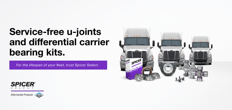 Service-free u-joints and differential carrier bearing kits.