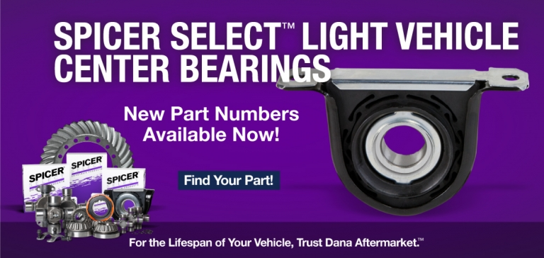 Spicer Select Light Vehicle Center Bearings